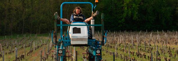 10 raisons pour un vigneron de faire du vin bio !