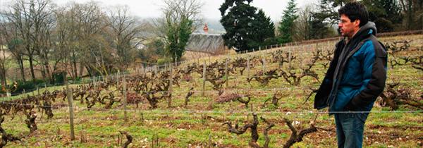 Michel Autran, vigneron tranquille à Vouvray