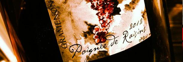 Poignée de raisins Domaine Gramenon